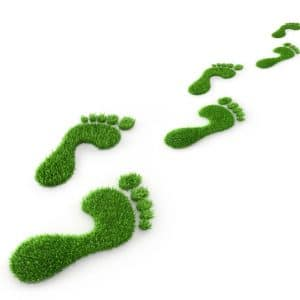 Environmental Sustainability Policy
